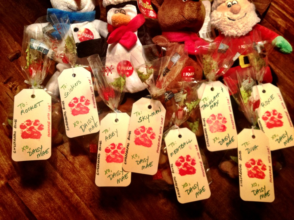 Gingerbread Bones for all of Daisy's friends...and toys for the ones who like to play.